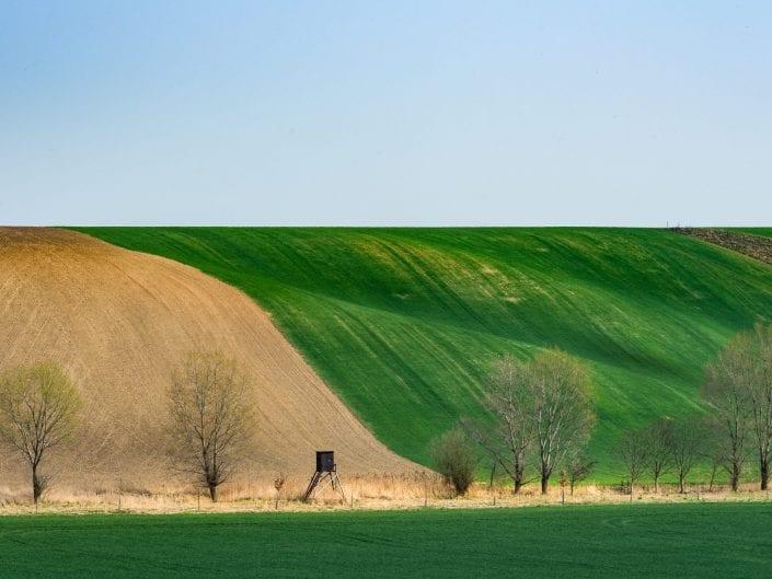 landscape moravia fields undulating rolling fields agriculture Moravia, Czech Republic, spring