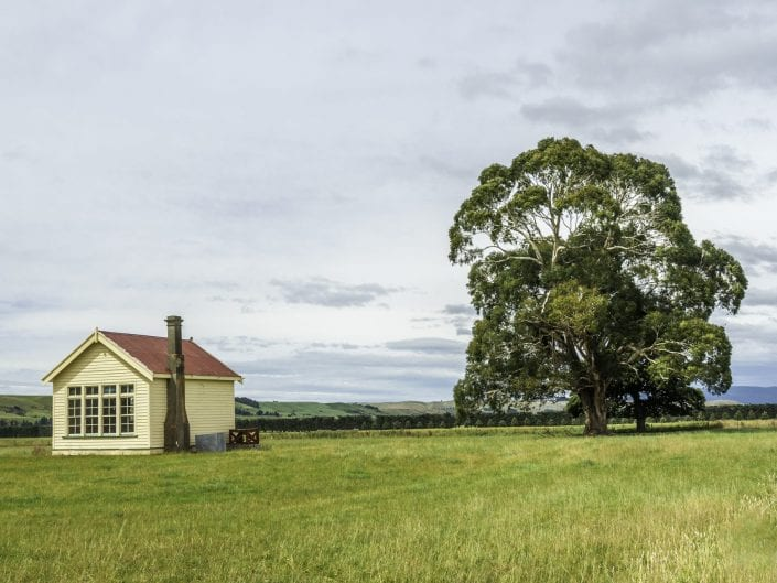 landscape photo, New Zealand , south Island, tree, house