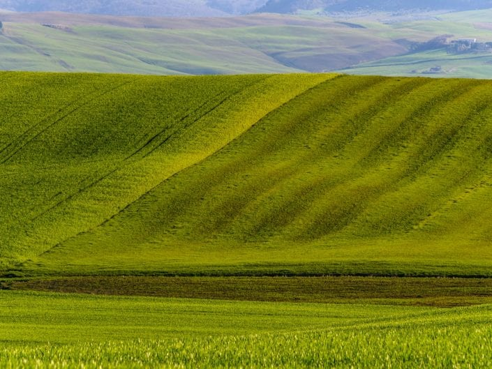 landscape in Tuscany, Italy, green rolling hills, fields, agriculture, pasture