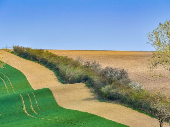 Moravia gentle landscape photo, agriculture fields undulating