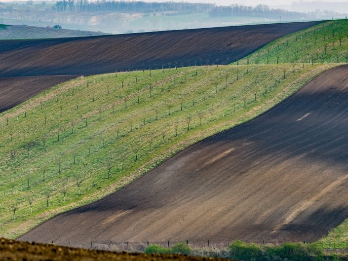landscape moravia high way fields undulating rolling fields agriculture