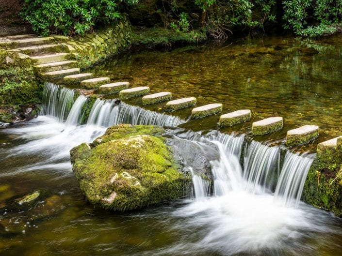 small stream in tollymore Forest Park Northern Ireland and stepping stones to get across the water