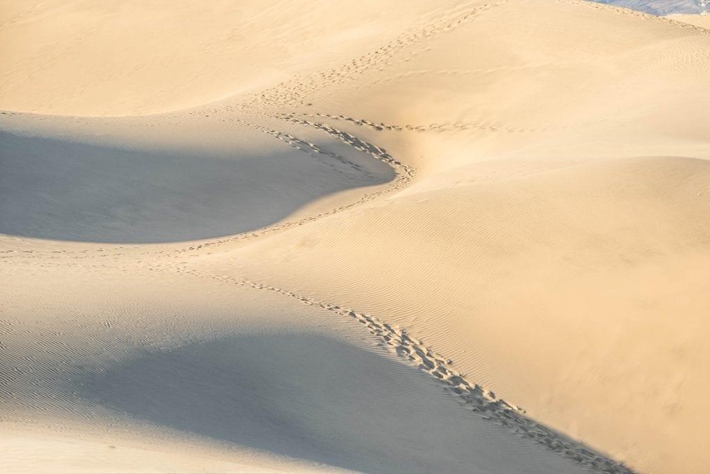 landscape photo desert picture without horizon dunes