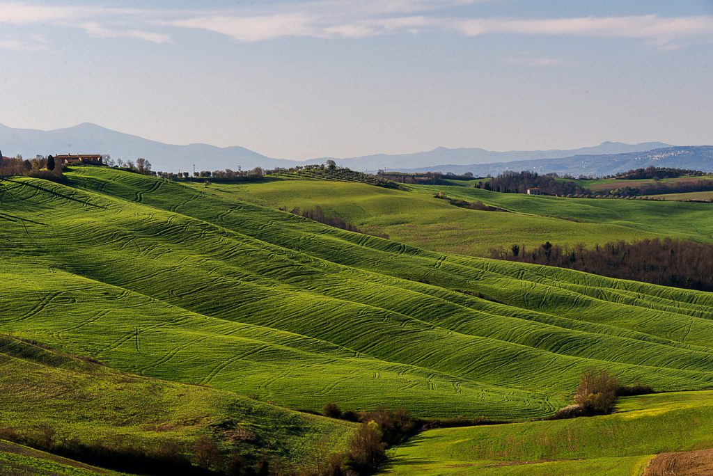landscape photo in Tuscany, Italy with lower sun showing the undulating landscape
