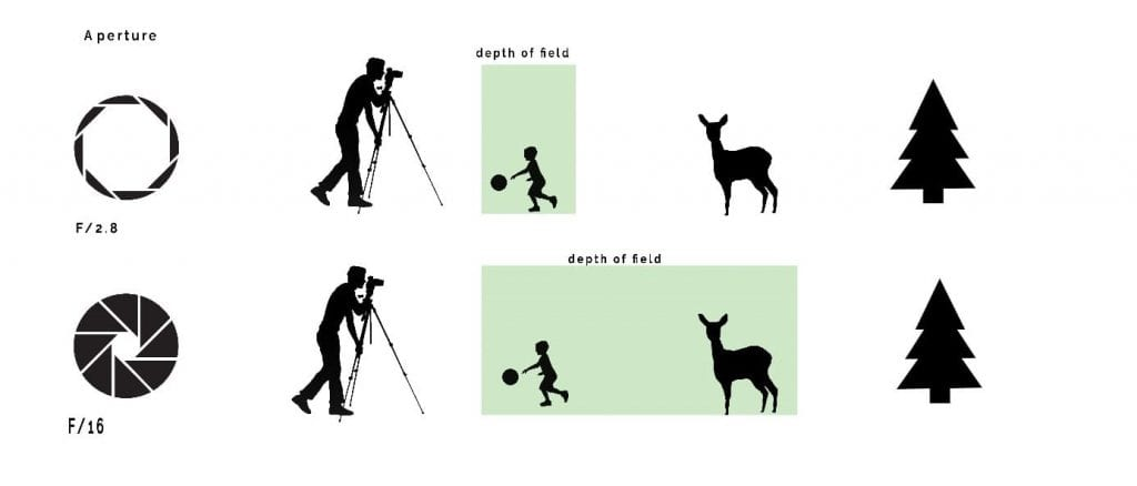 Depth of field (DOF) in relation to aperture and distance